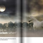 Pictures_Magazin_10_2014_06