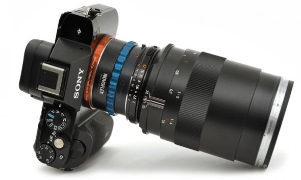 Hervorragend an der A7R: Das Carl Zeiss Makro-Planar 2/100 T* ZF.2, adaptiert mit Novoflex NEX/NIK Adapter.