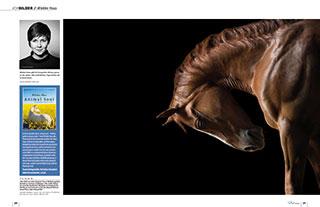 vorbilder-Doppelseite-Slideshow-Pictures-3