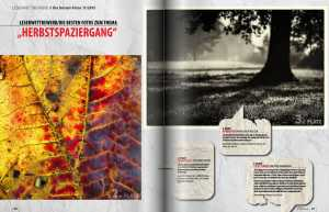pictures_magazin_11_2015_05