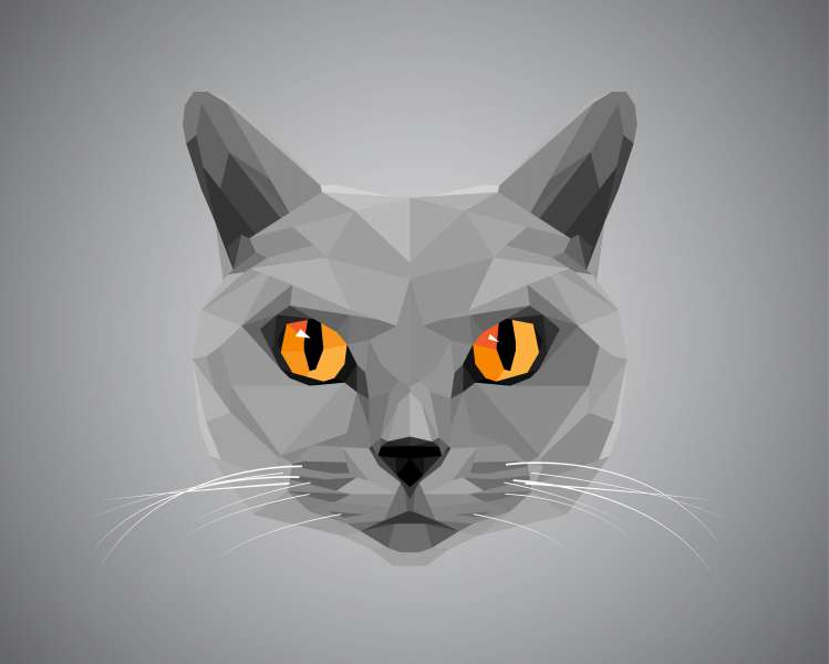 Grey cat with orange eyes - polygonal style. © pokki - Fotolia.com
