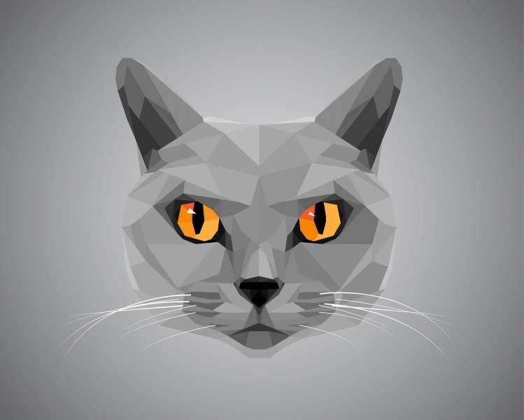 Grey cat with orange eyes - polygonal style. © pokki - Fotolia.com