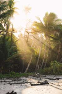 Mystisches Costa Rica