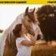 Fotowissen: Tierfotografie – Das Leben ist ein Ponyhof | Stay@Home Spezial