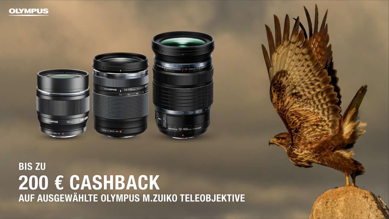 GO WILD – mit der aktuellen Olympus Cashback-Aktion Bis zu 200 € beim Kauf ausgewählter M.Zuiko Objektive & Konverter sparen